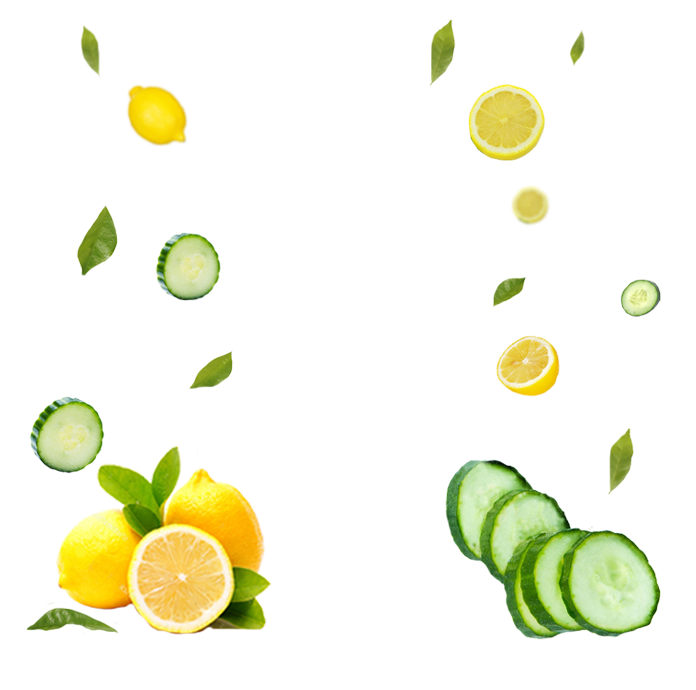 LEMON CUCUMBER MINT INGREDIENTS